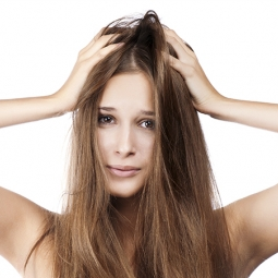 Ditch the Itch - Dandruff Solutions