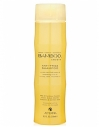 Alterna Bamboo Smooth Anti-Frizz Shampoo