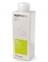 Framesi Morphosis Balance Shampoo