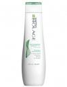 Matrix's Biolage Scalpsync Anti-Dandruff Shampoo