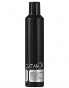 TIGI Catwalk Work It Hair Spray