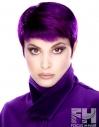 Purple Haze Pixie