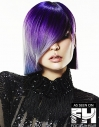Purple Bob hairstyle Perfection