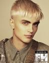 Flaxen Fade for men hairstyle