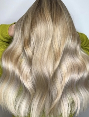 Must-Have Highlights