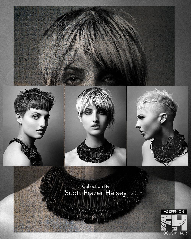 Scott Frazer Halsey Collection